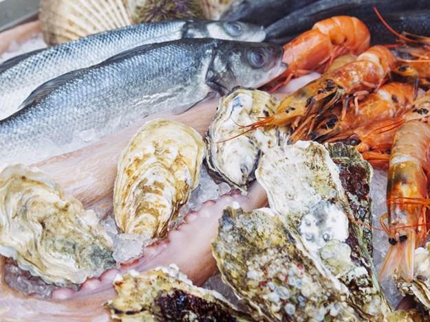 Whakatane-Seafood-Festival.jpg