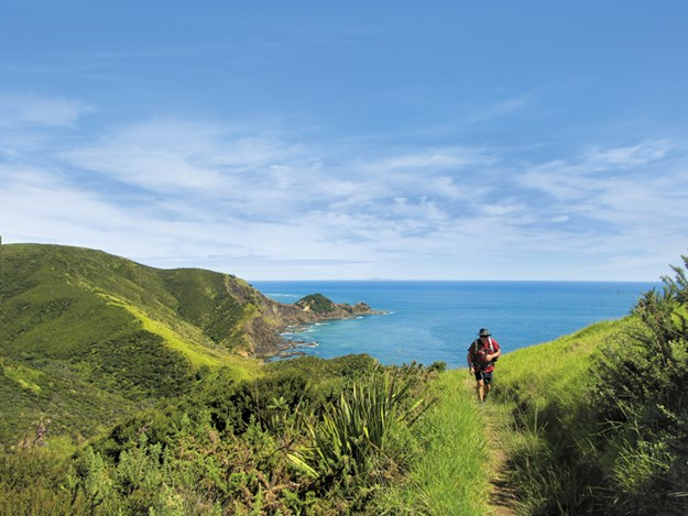 Whelan_5-On-the-track-from-Tapotupotu-Bay---to-Cape-Reinga.jpg
