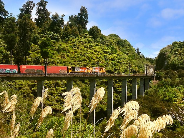 Ohakune-riding-through-rail-history-A-Freight-Train-Passes-Over-the-New-Hapuawhenua-Viaduct.jpg