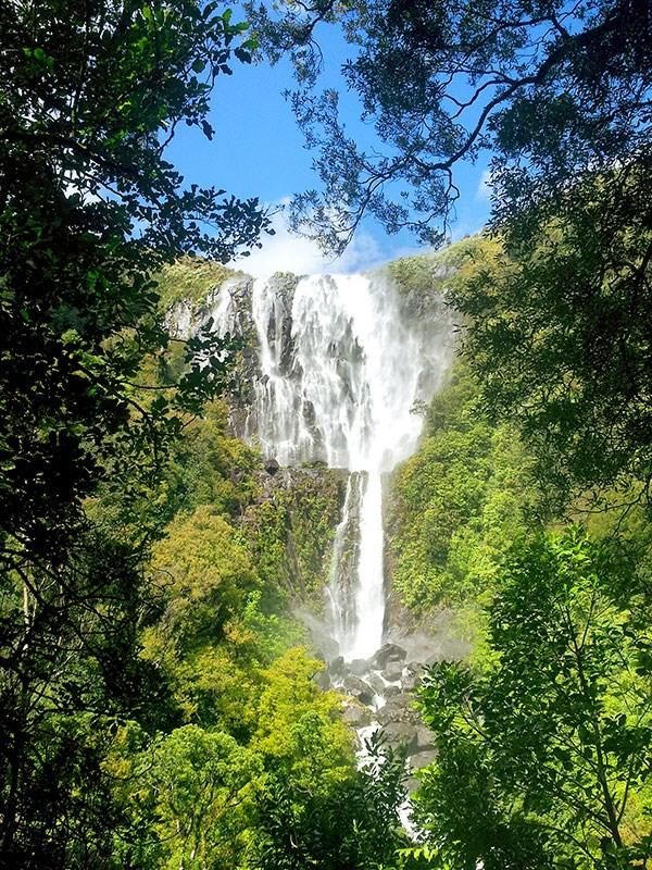 Wairere-Falls-KM2.jpg