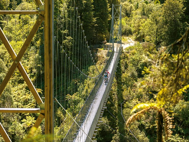 Cycling the Timber Trail Aerialview_Maramataha_suspension bridge_TimberTrailNZ.jpg