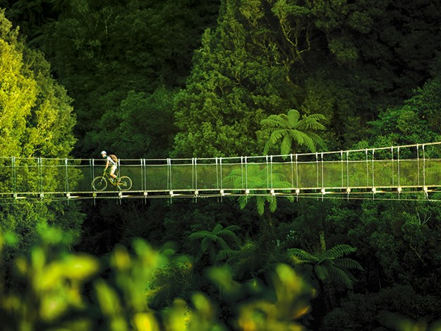 Cycling the Timber Trail Crossing the Maramataha_Pureora_TimberTrailNZ.jpg