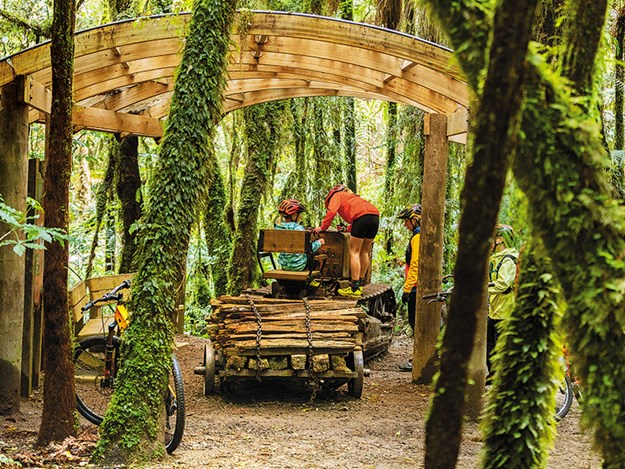Cycling the Timber Trail Historic Caterpillar Tractor_Timber TrailNZ.jpg
