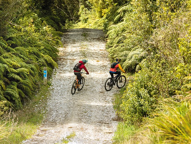 Cycling the Timber Trail Navigating the ride variety_TimberTrailNZ.jpg