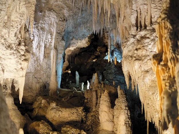 A-Z of the Waikato Copy of Aranui Cave (Liz Light).jpg