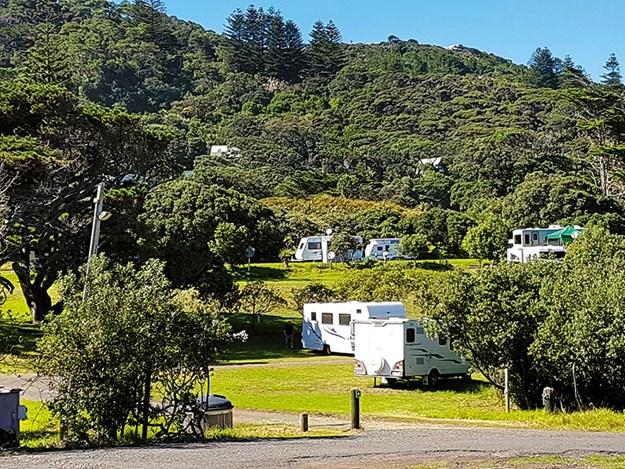 Muriwai Beach Campground_1.jpg