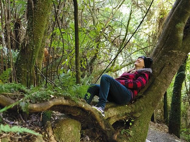 Kaitoke regional park Rivendell