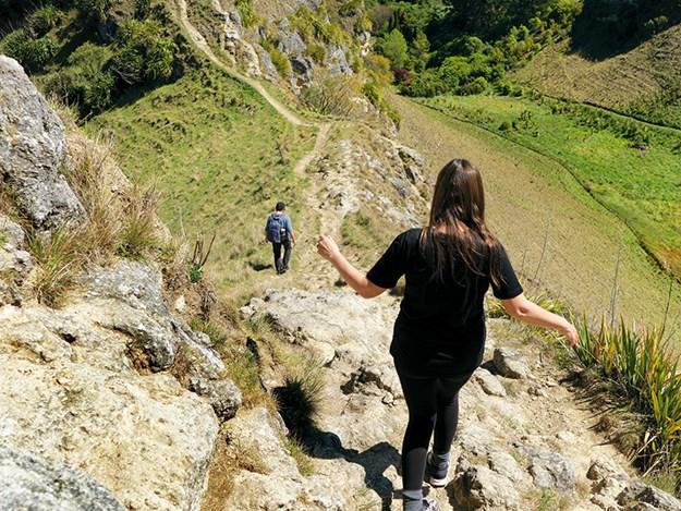 Te mata peak walking track