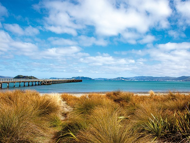 Petone has panoramic views of Wellington city and harbour; the wharf is a distinctive and much-loved landmark