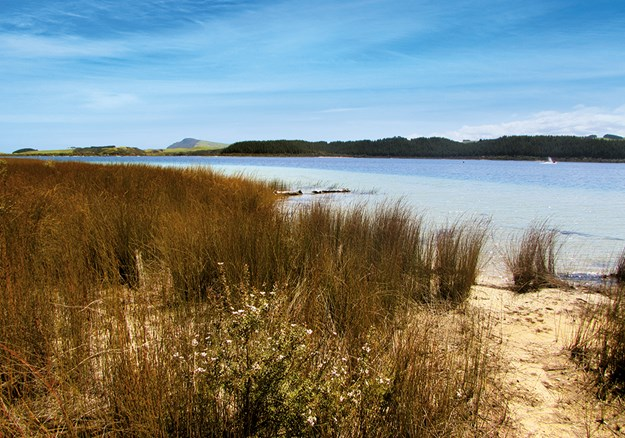 Whelan_5 View of Lake Taharoa with Maunganui Bluff in the distance.jpg