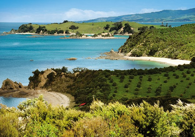 Ladies_ Bay, Men_s Bay and Ponui in the background from the cemetery.jpg