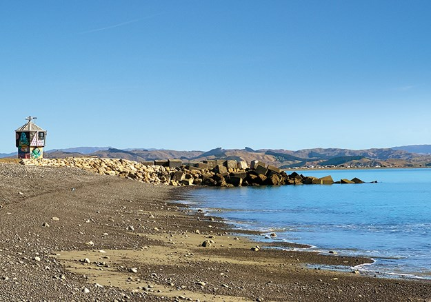 Perfume Point is the starfish capital of NZ!.jpg