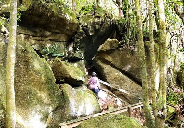The strange rock formations that form the roof over  Kawiti caves 2.jpg