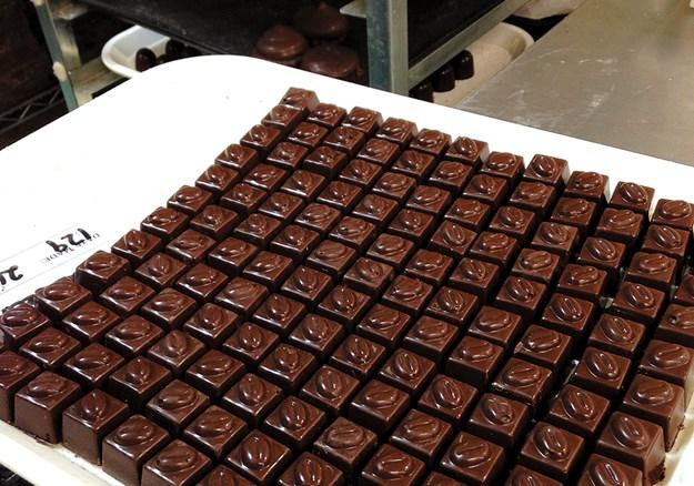 Freshly made chocolates.jpg