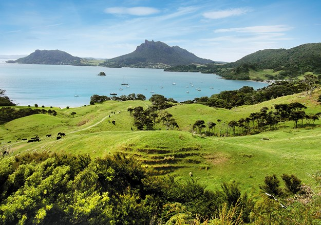 From the left_ Mount Aubrey, Mount Manaia and Urquharts Bay from Te Whara Track.jpg