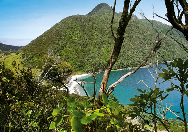 Smugglers Bay with Mount Lion in the background, from Busby Head Track.jpg