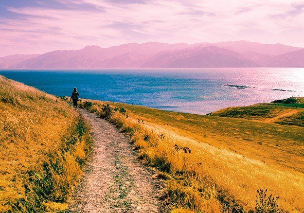 Kaikoura Peninsula walkway - Credit Lonely Planet.jpg