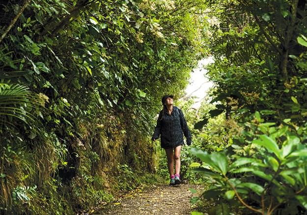 Kapiti Island is a joy to explore.jpg