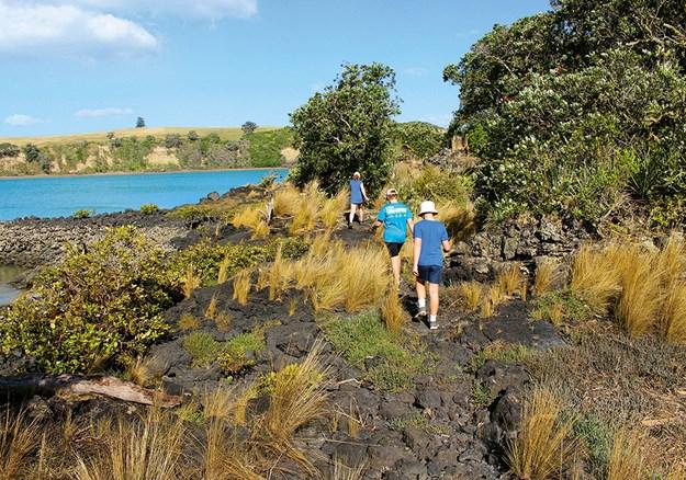 Crossing the rugged rocks of lava flows on Rangitoto Island.jpg