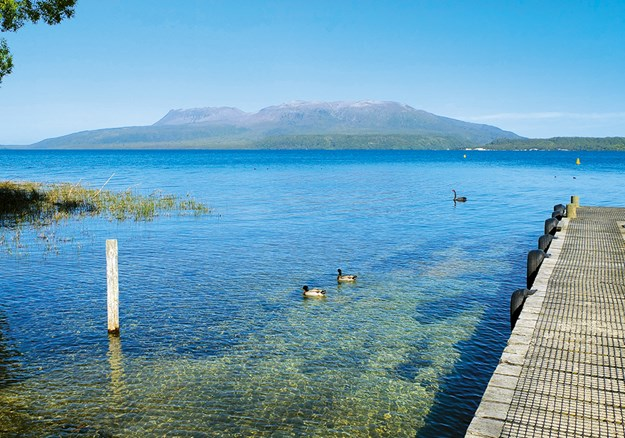 Mt Tarawera from the shore of the lake of the same name_.jpg