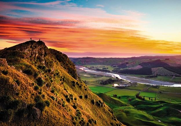 shutterstockRF_1145140193_Te Mata Peak_Martin Vlans.jpg