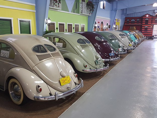 Volkyland-sale-beetles.jpg