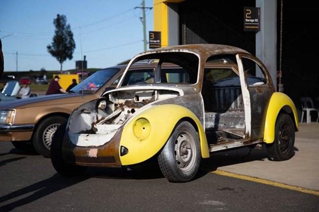 rolling-30-beetle.jpg