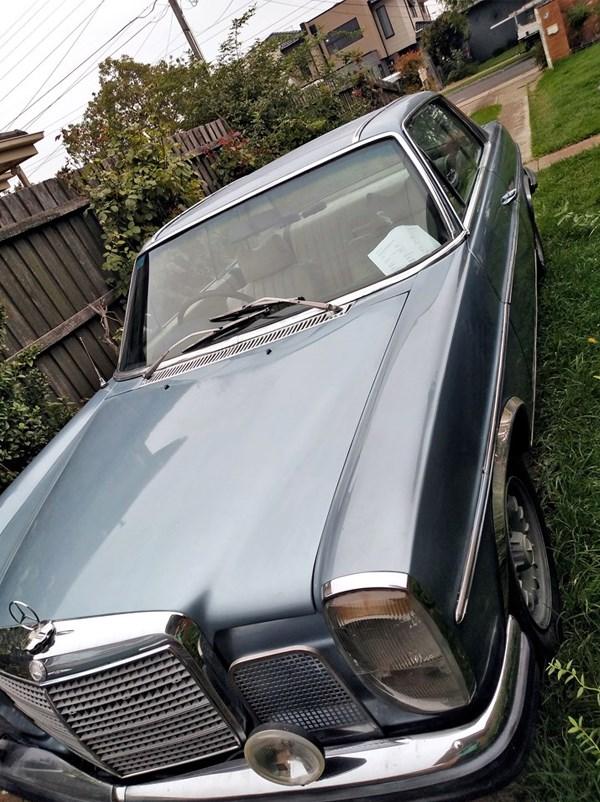 Mercedes-280CE-rear-side.jpg