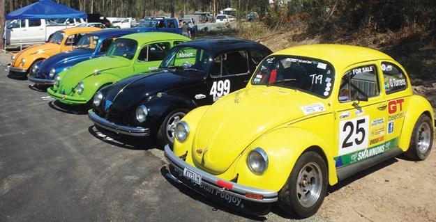 volkswagen-beetles.jpg