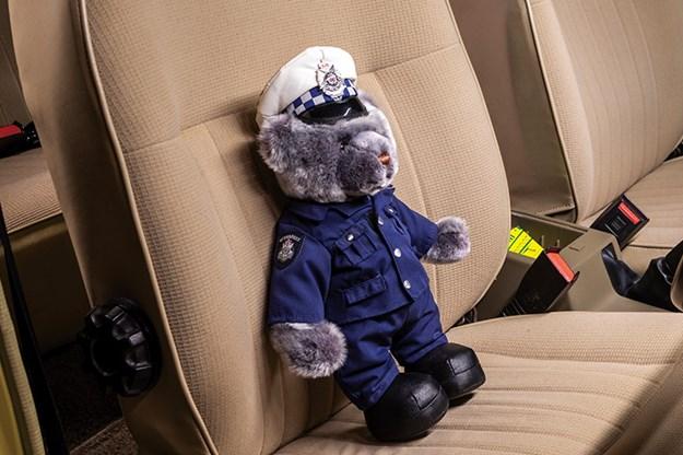 police-bear.jpg