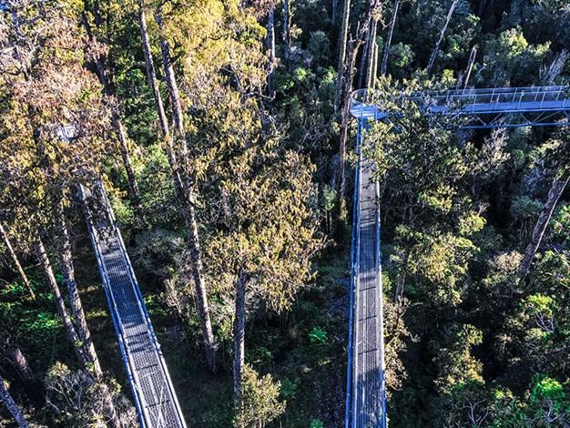 Jill-Malcolm-sky-walker-Looking-down-on-the-walkway-from-the-tower-.jpg