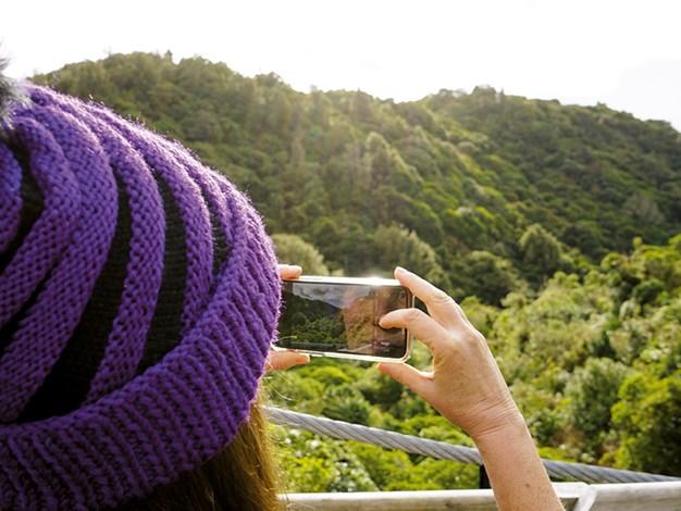 Zealandia is 500+ acres of lush vegetation