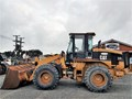 2002 CATERPILLAR 924 GZ