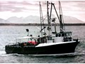1970 OTHER TUNA LONG LINER & BOTTOM LINER. SET NETTING. TROLLING