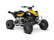 Can-Am DS 450 X MX ATV