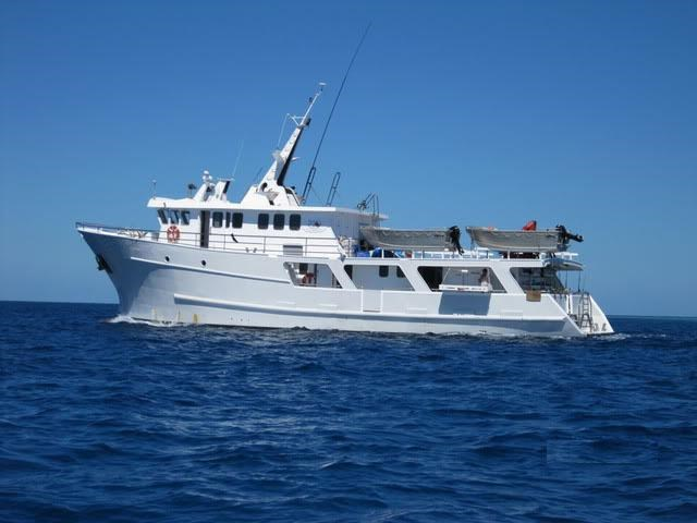 dive charter/accommodation vessel fishing 244476 001