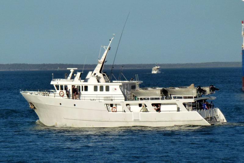 dive charter/accommodation vessel fishing 244476 002