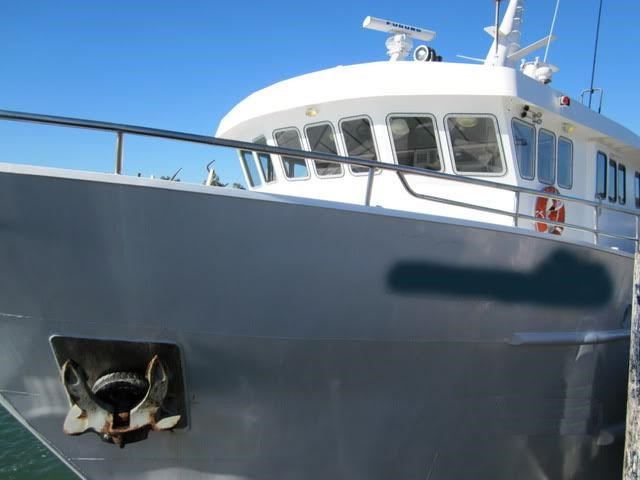 dive charter/accommodation vessel fishing 244476 006