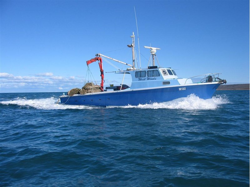 south australian finfish operation 257628 004