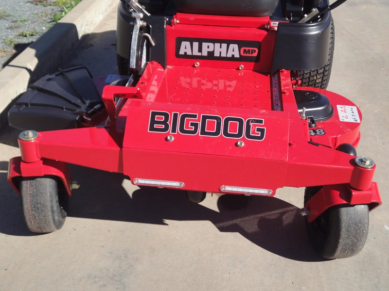 big dog alpha mp 422322 010