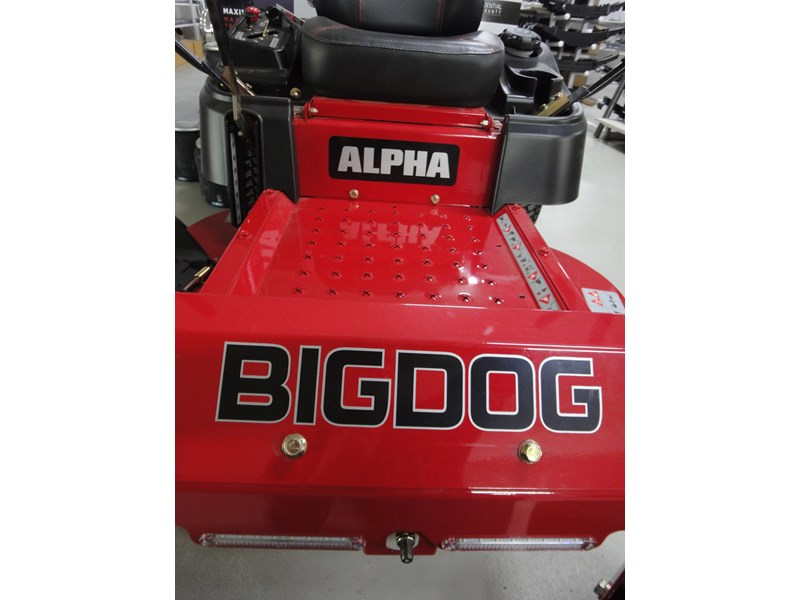 big dog alpha 422347 002
