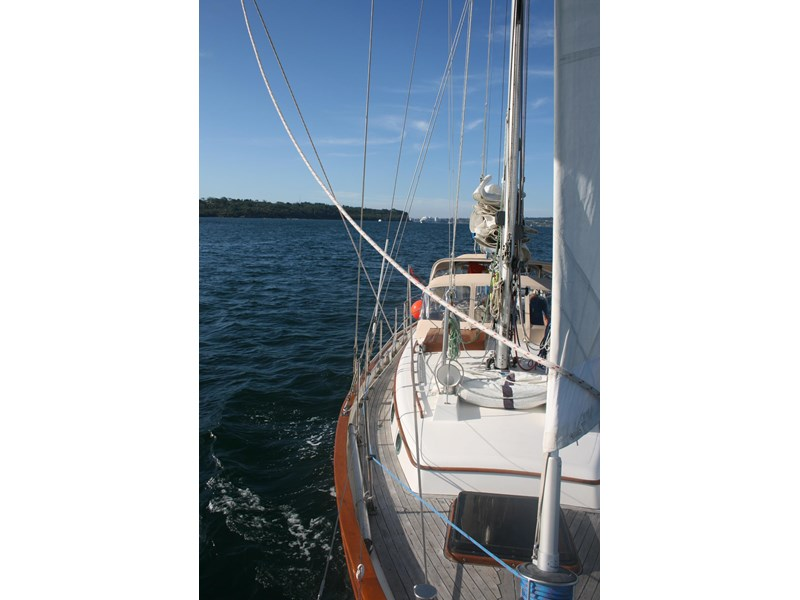 young sun 43 staysail cutter 459578 017