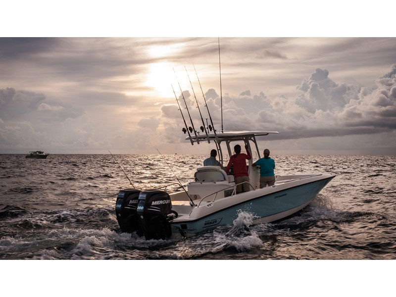 boston whaler 270 dauntless 294226 005