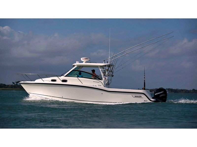 boston whaler 315 conquest 245300 001