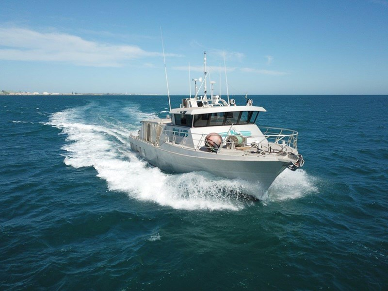 millman utility vessel present all offers 548312 005