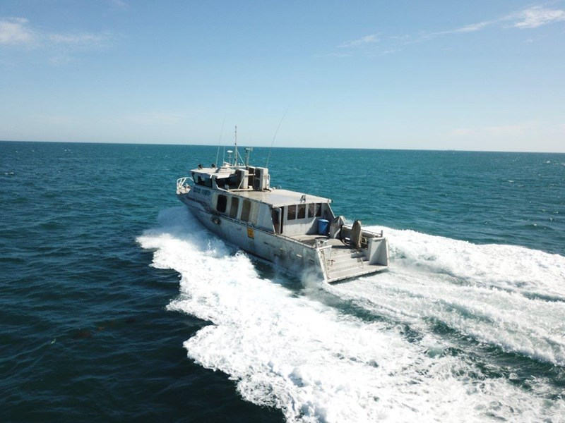 millman utility vessel present all offers 548312 009
