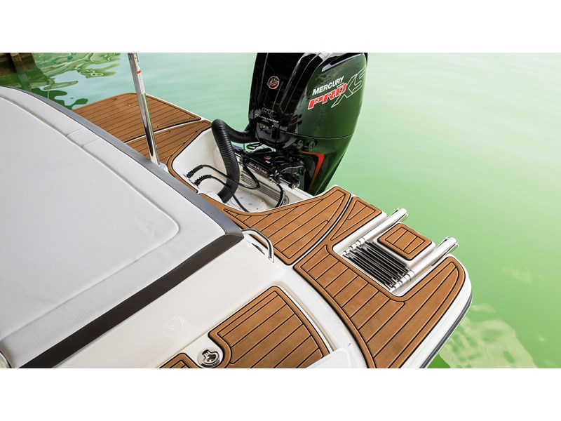 sea ray spx 190 outboard 294576 048
