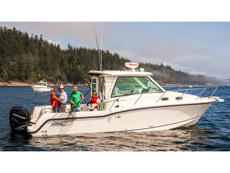 boston whaler 315 conquest pilothouse 294256 005