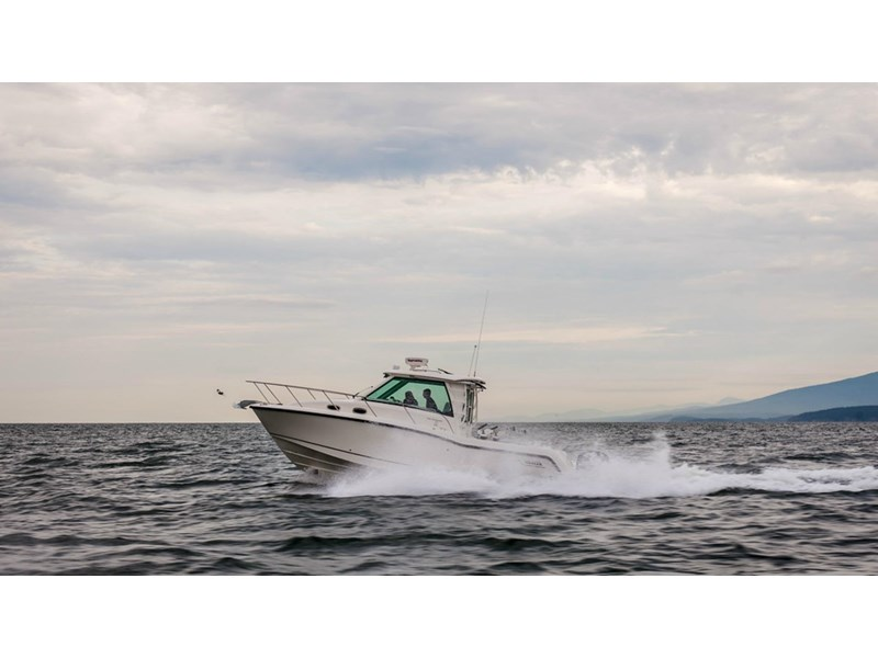 boston whaler 315 conquest pilothouse 294256 007