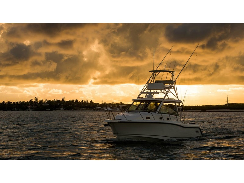 boston whaler 345 conquest - boat share 796708 003